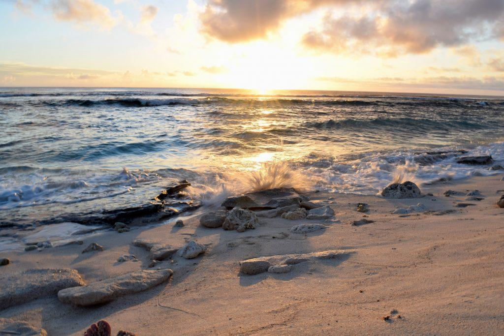 Tonga: My Adventures in Tonga an Island Paradise